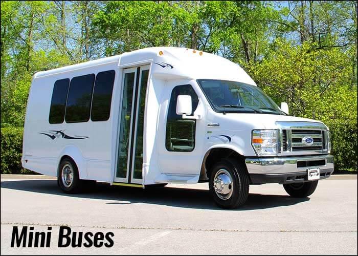 Mini Bus Mini Buses Carpenter Bus Sales